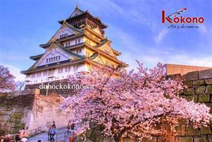 Kinh nghiệm Du học Nhật Bản (Kỳ 1)