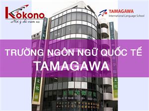 Trường Ngôn ngữ Quốc tế Tamagawa | Thông tin | Học phí | Hình ảnh