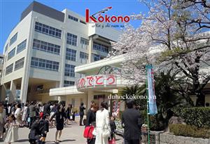 Thông Tin Cần Biết Khi Chọn Trường Du Học Nhật Bản