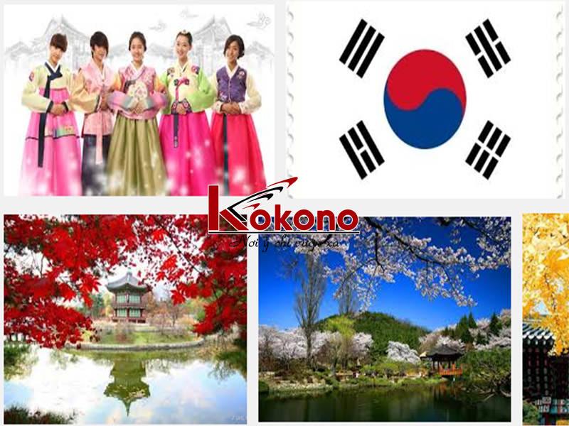 tiếng Hàn Ninh Kiều