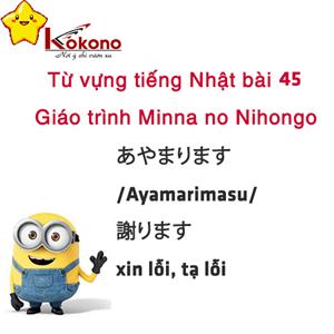 Từ vựng tiếng Nhật bài 45 giáo trình Minna no Nihongo