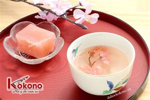 Văn hóa ẩm thực Nhật Bản - Hoa anh đào - Du học Nhật Bản Kokono 3