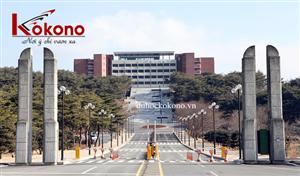 Đại học GyeongJu hợp tác với Kokono