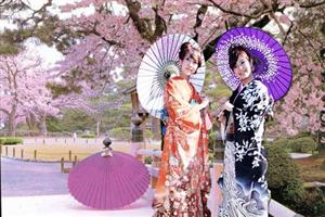 Hình ảnh Văn hóa Nhật Bản