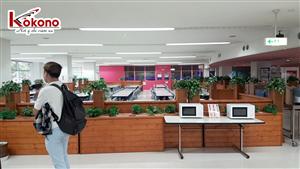 Kokono Công tác tại trường Sendai - Nhật Bản 3