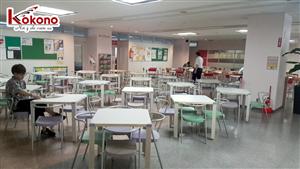 Kokono Công tác tại trường Sendai - Nhật Bản 5
