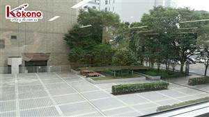 Kokono Công tác tại trường Sendai - Nhật Bản 6